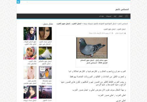لقطة شاشة لموقع كلمات ناعمة بتاريخ 08/08/2020 بواسطة دليل مواقع موقعي